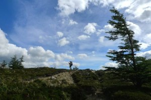 'A Few Memories of Our Own', Tim Moss Walks Patagonia